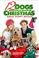 12 dogs of christmas great puppy rescue - 12 Days Till Christmas