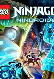 Lego Ninjago: Nindroids Poster