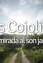 Los Cojolites, Una mirada al son jarocho Poster