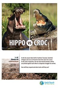 Primary photo for Hippo vs Croc