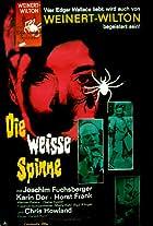 Die weiße Spinne