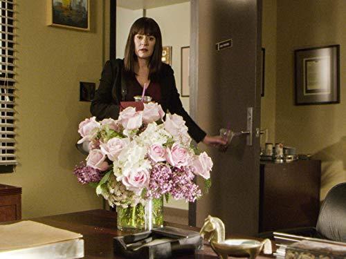 Paget Brewster in Criminal Minds (2005)