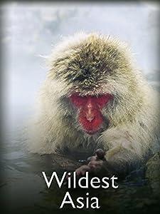Bittorrent movies downloads sites Wildest Asia Australia [WQHD]