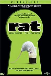 Primary photo for Rat