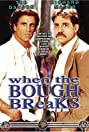 When the Bough Breaks (1986) Poster