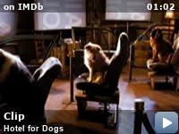 Hotel For Dogs 2009 Imdb