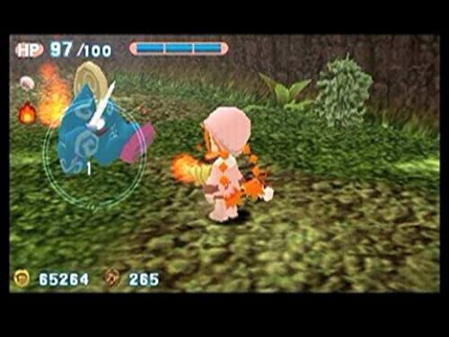 Gurumin: A Monstrous Adventure (VG)