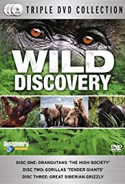 Wild Discovery Poster