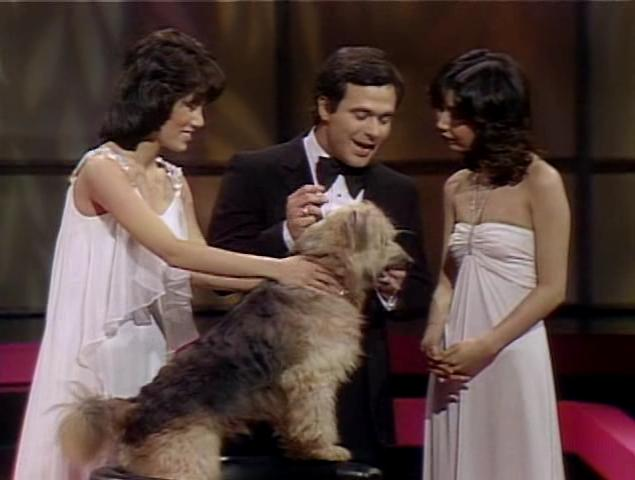 Jeff Altman, Keiko Masuda, Mie, and Johnny the Dog in Pink Lady (1980)