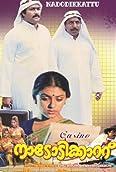 Nadodikkattu (1987)