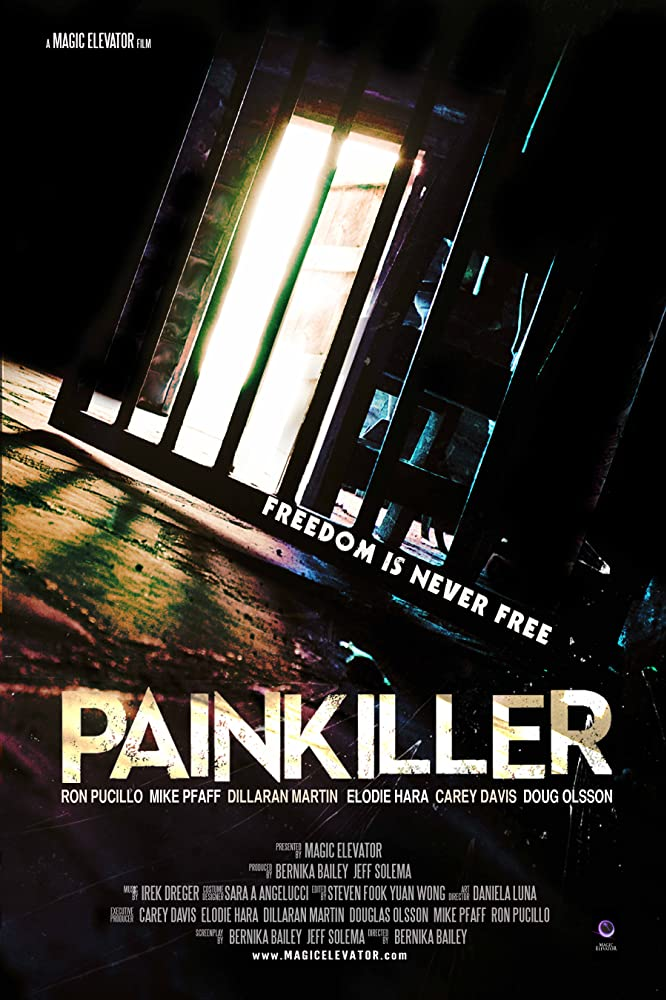 Painkiller (2013) Hindi Dubbed