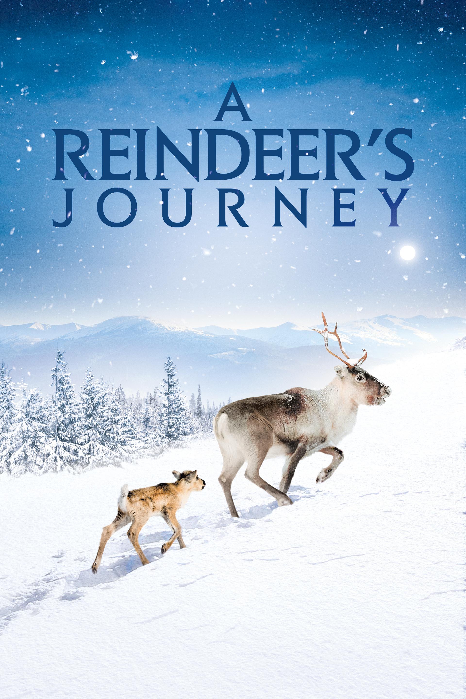 A Reindeer's Journey (2018) - IMDb