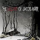 The Killing of Jacob Marr (2010)