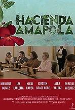 Hacienda Amapola