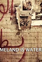 Homeland Is Not a Series