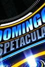 Domingo Espetacular (2004) Poster