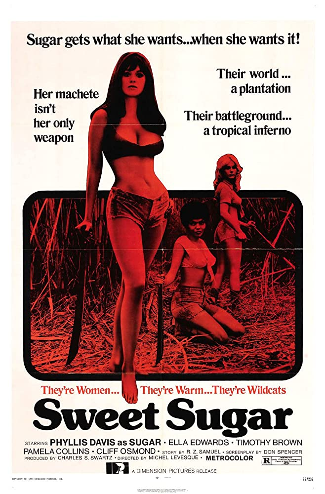 18+ Sweet Sugar 1972 English 300MB HDRip Download