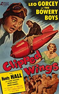 Clipped Wings full movie in hindi 720p download