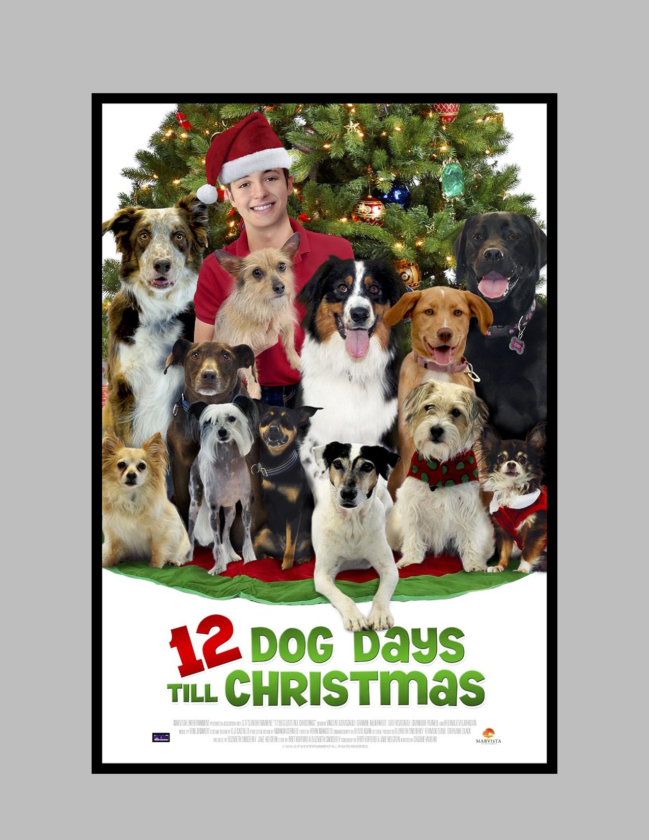 12 dog days till christmas 2014 imdb - Cast Of Petes Christmas