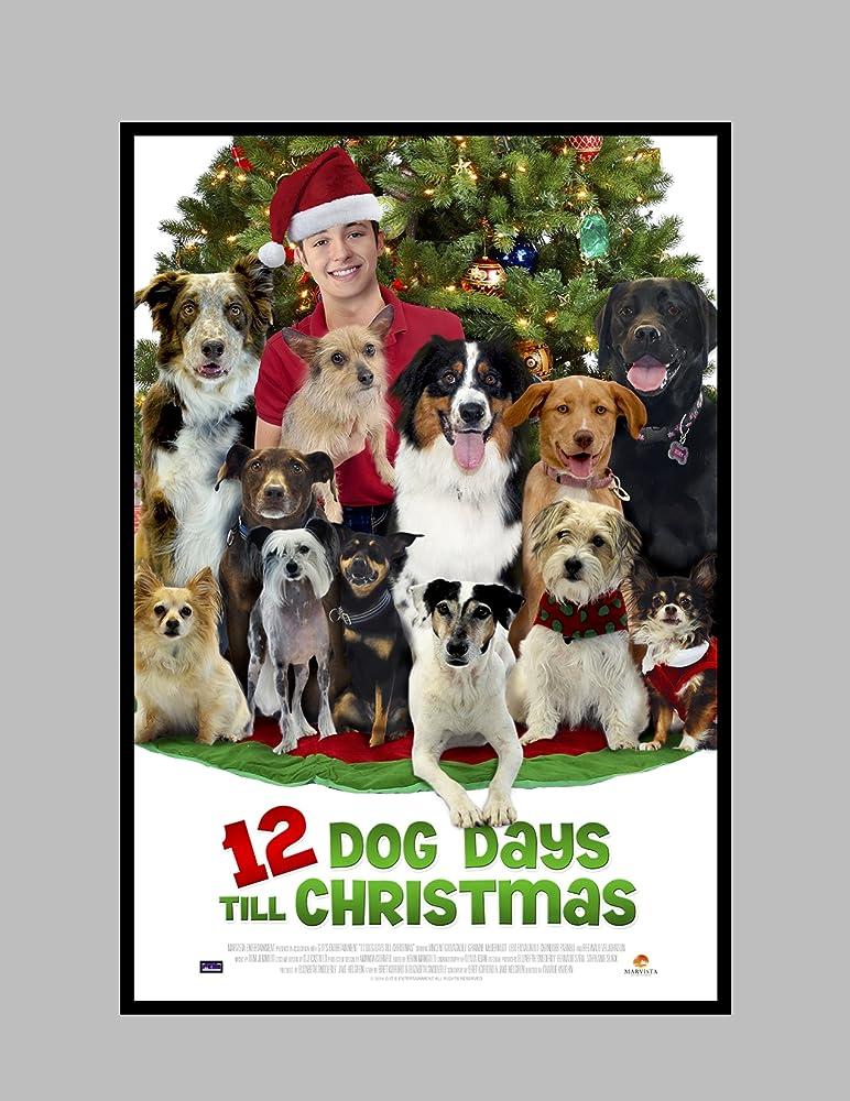 12 dog days till christmas 2014 - 12 Days Till Christmas