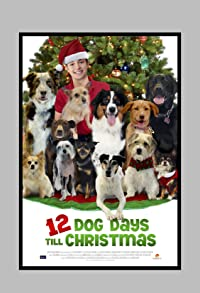 Primary photo for 12 Dog Days Till Christmas
