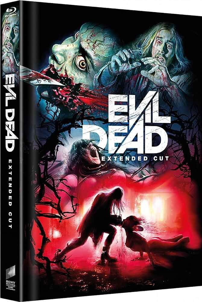 Evil Dead (2013) 720p BluRay x264 AAC ESub Dual Audio [Hindi + English] 995MB