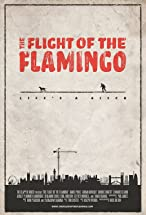 Primary image for The Flight of the Flamingo
