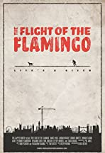 The Flight of the Flamingo