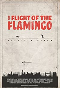 Primary photo for The Flight of the Flamingo