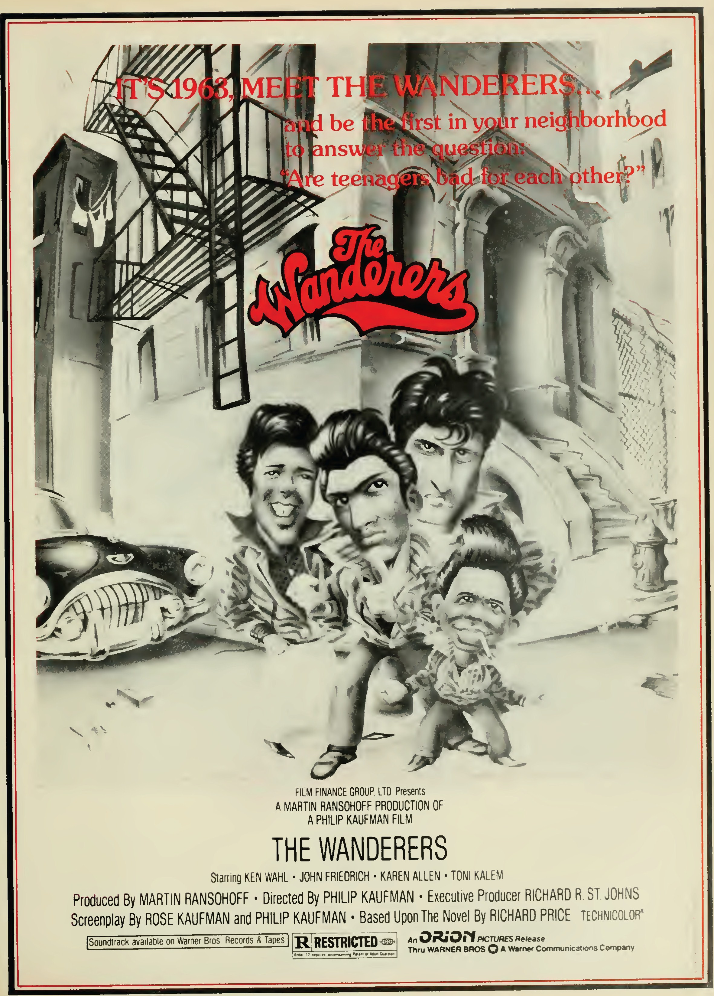 the wanderers film dvd