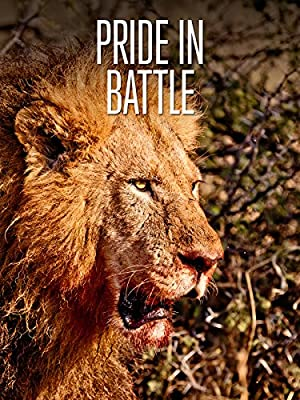 Pride in Battle