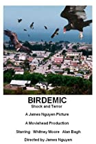 Birdemic: Shock and Terror (2010) Poster
