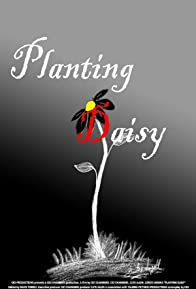 Primary photo for Planting Daisy