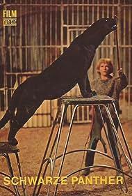 Schwarze Panther (1966)