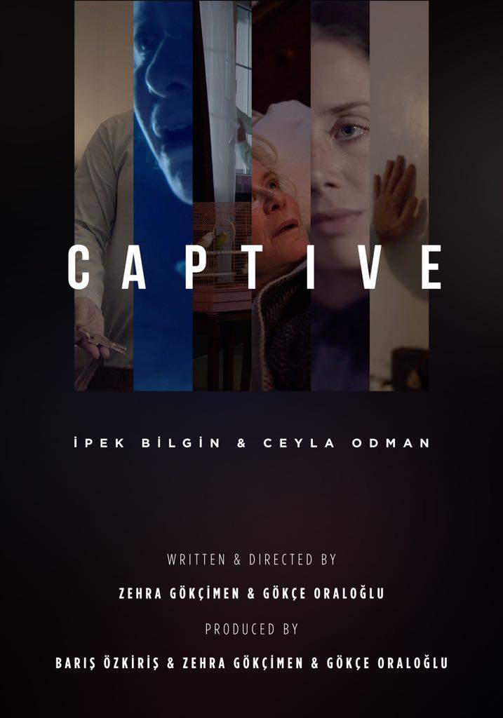 The Captive 2017