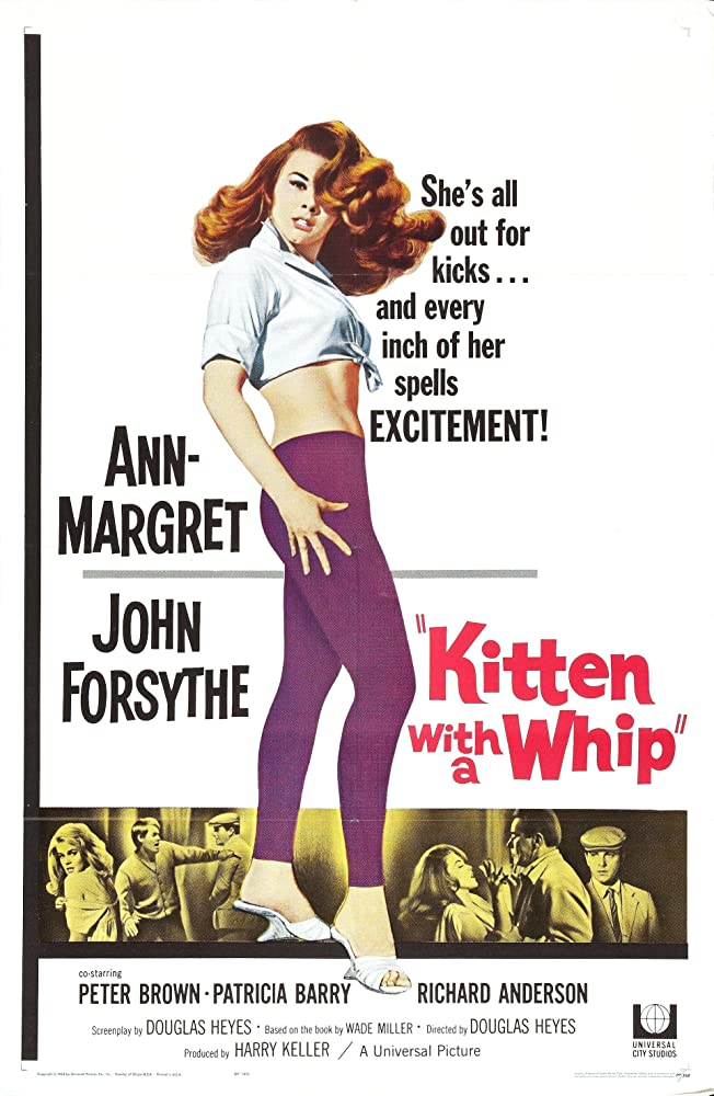 Ann-Margret, John Forsythe, and Peter Brown in Kitten with a Whip (1964)