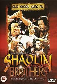 Shao Lin xiong di (1977)