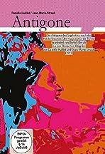 Die Antigone des Sophokles nach der Hölderlinschen Übertragung für die Bühne bearbeitet von Brecht 1948 (Suhrkamp Verlag)