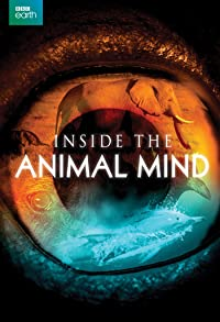 Primary photo for Inside the Animal Mind