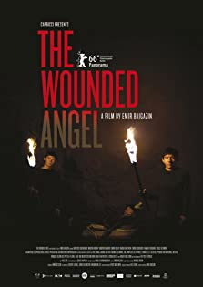 The Wounded Angel (2016)