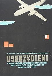 Leute mit Flügeln Poster