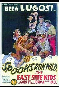 Bela Lugosi, David Gorcey, Leo Gorcey, Donald Haines, Huntz Hall, Ernest Morrison, Bobby Jordan, and Dorothy Short in Spooks Run Wild (1941)