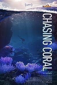 Chasing Coralไล่ล่าหาปะการัง