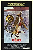 Tulips (1981) Poster