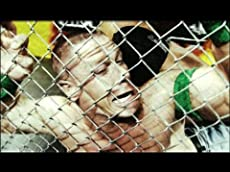 WWE: Hell in a Cell: 2013