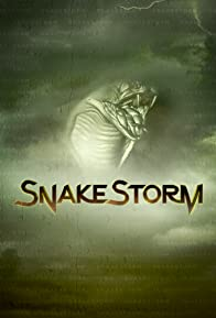 Primary photo for SnakeStorm
