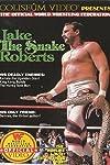 Jake the Snake Roberts (1987)