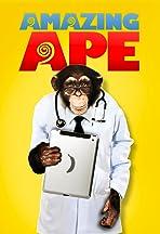 Amazing Ape