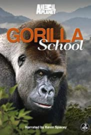 Gorilla School Poster