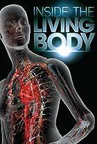 Inside the Living Body